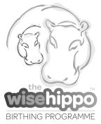 wise-hippo-logo-block-grey
